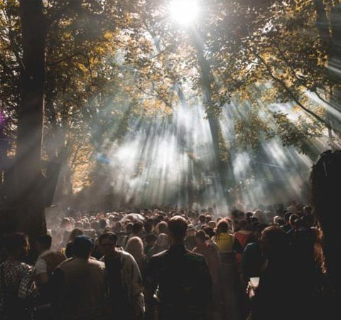 gottwood 2020: a new decade, the next chapter